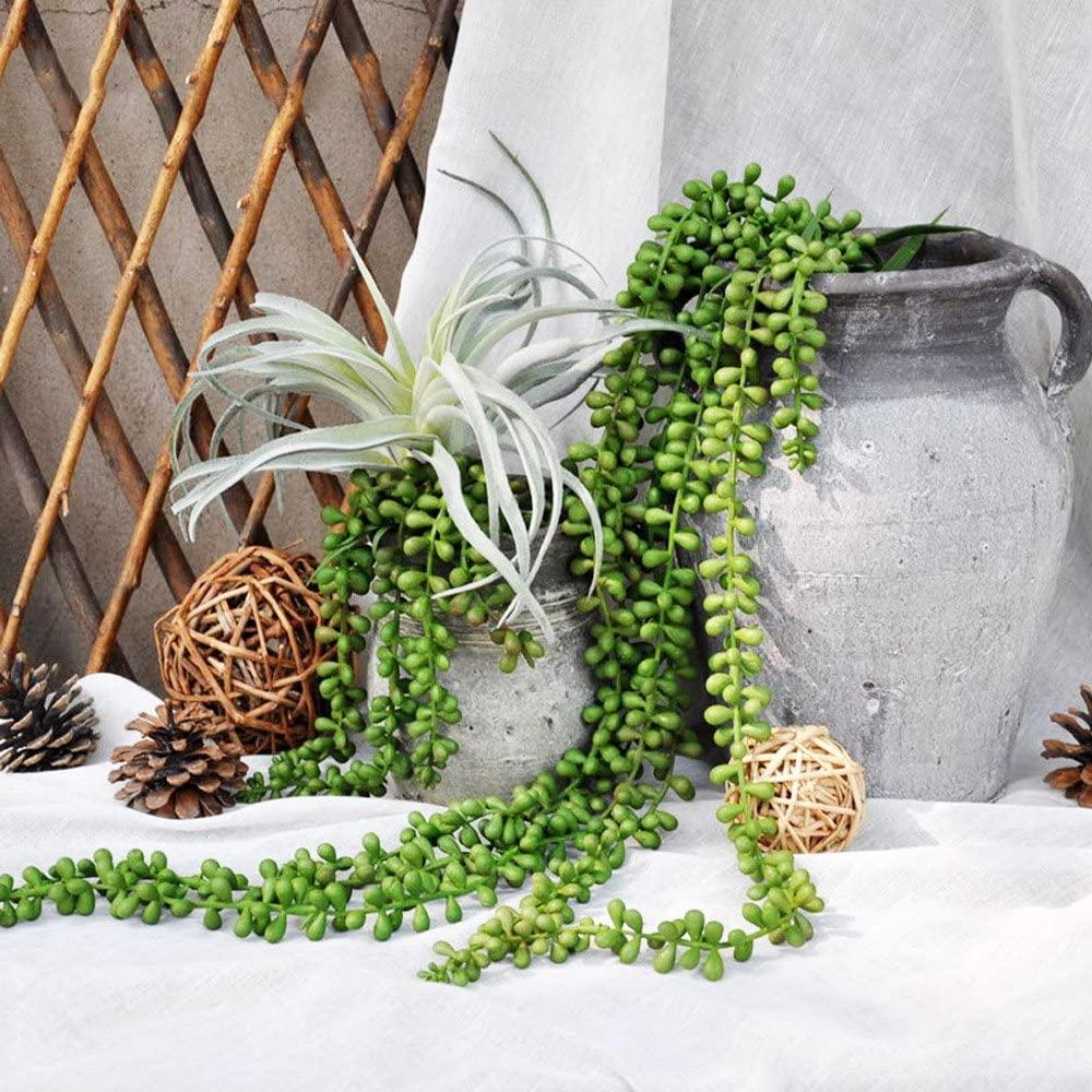 Artificial Ivy and Eucalyptus